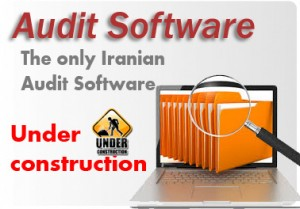 Audit Software